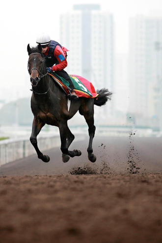 Hong Kong Races